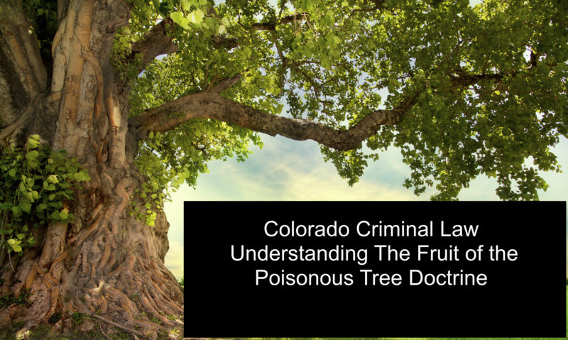 Colorado Criminal Law - Understanding The Fruit of the Poisonous Tree Doctrine